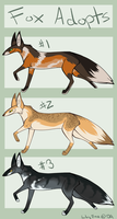 Fox Adopt Set 1 by Lily-Fae
