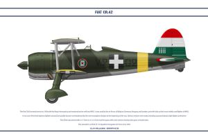 FIAT CR42 Hungary 2 by WS-Clave