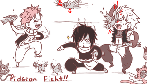 Pidgeon fight ! by hyokka