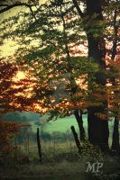 Autumn Sunrise by MiriamPeuser