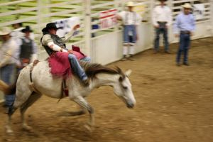Rodeo by JaredPLNormand