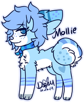 Mollie by Damian-Fluffy-Doge