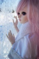 Frost on window by KaizokuHime