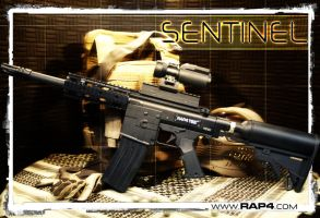 Sentinel by RealActionPaintball