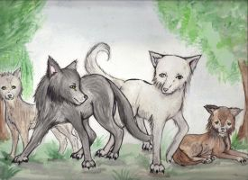 Wolf pack  for twilightwarwolf13 by Charlottekate-chan