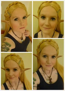 Zelda - Breath of the Wild  - WigMake-up Test by Fall3nW1ngs