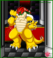 Bowser king of Koopa castle by Bowser2Queen
