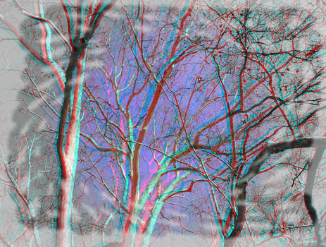 3D anaglyph stereo trees by gogu1234