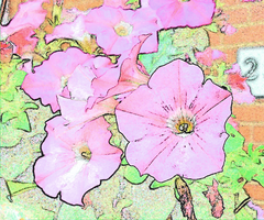 Pink Flowers (artified photo) by darenw