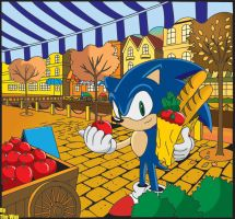 Sonic Shoping:Sonic X Edition by TheWax