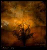 Neverlasting by IrondoomDesign