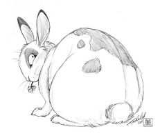 Fat bunny by TaniDaReal