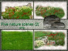 Five nature scenes  grasses(2) by roula33