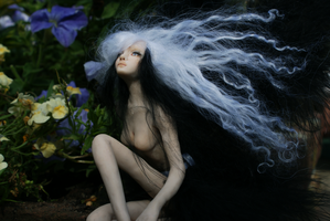 Raven Faery 2 by gingerbouf