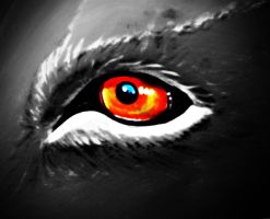 the red eye by awjay