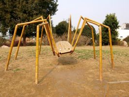 Giant Bamboo Spider by angusfk