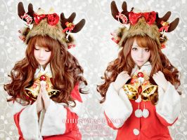 CHIRSTMAS FANCY 5 by jeanne10