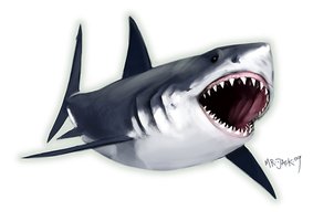 Great White by Mr--Jack