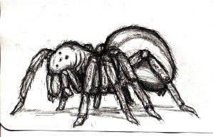 Giant Spider by KingOvRats