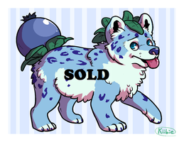 Offer to adopt - Blueberry Pup -CLOSED- by Kiibie-Adopt