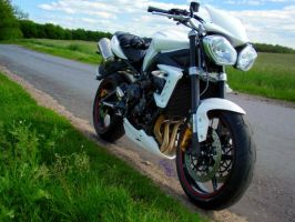 Street Triple in nature 2 by MotoYoshi