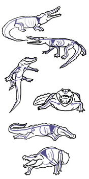 Crocodile Poses by Voodoo-Wolf