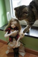Emilie and the cat by shivanasha