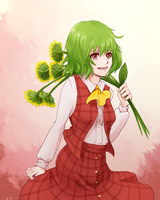 Kazami Yuuka by Kurai-Kaze