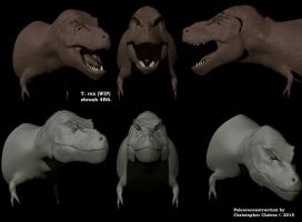 Busto T. rex by Christopher252
