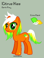 MLP - Citrus Kiss Reference Sheet by porcelian-doll
