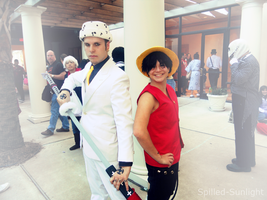 Luffy and Law by Spilled-Sunlight