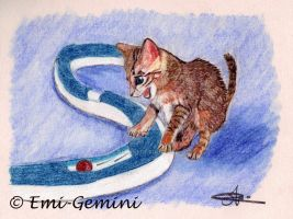 The little player kitten by Emi-Gemini