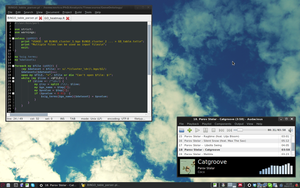 [Debian] [Xfce] Summer, work and music by rent0n86