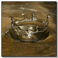 WD  Water Crowns  005 by LoneWolfPhotography