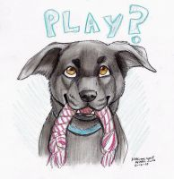 PLAY? by NatsumeWolf