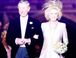 Camilla Duchess of Cornwall by grapecx