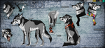 Sil -Reference Sheet 2014- by ElectricSilence