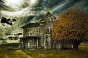 House in the Yellow Field by jaredtheashby