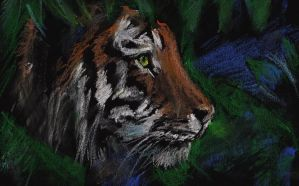 Tiger Pastel Drawing by 80sdisco