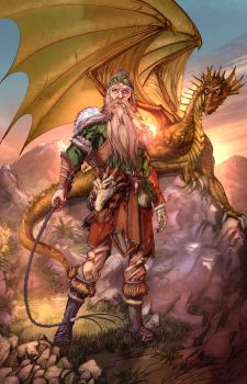 Nature Druid with Yellow Dragon by cehnot