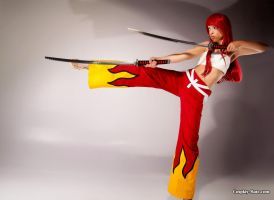 Erza from fairy tail by pgmorin