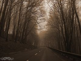 misty road by Wintertale-eu