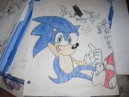 sonic the heghog by spandy123