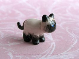 Siamese Kitty by candymonsters