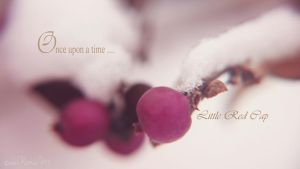 Once upon a time... Little Red Cap by kumArts