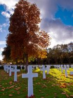 Autumn American Cemetery Cambridge by davepphotographer