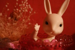 Bunny of mine by KittenWithoutName