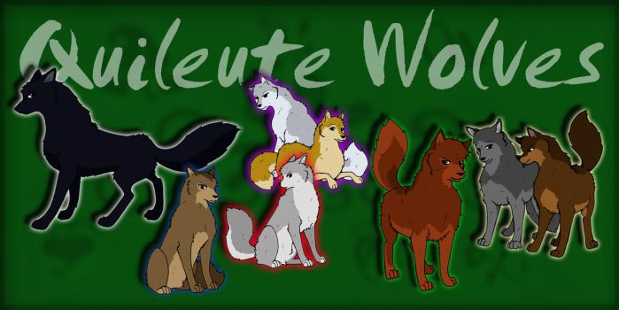 Quileute Wolves - New Moon by Dorchette