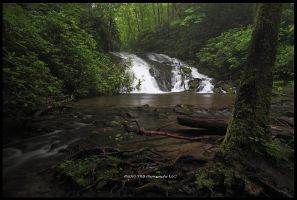 Indian Creek Falls II by TRBPhotographyLLC