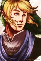 Link- Hyrule Warriors by LitYousei